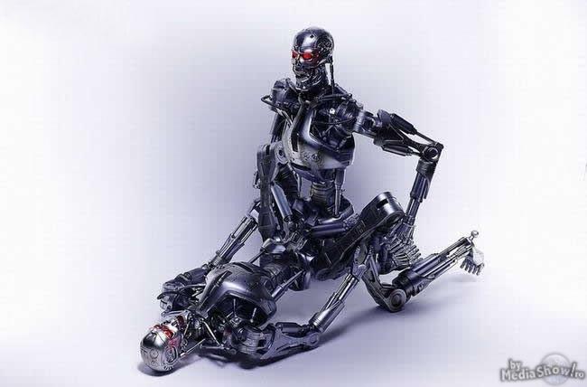Kamasutra+Terminator+9.jpg