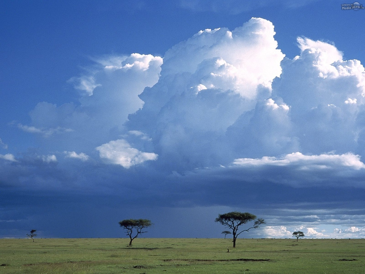 Storm Over the Savannah, Masai Mara National Reserve, Kenya