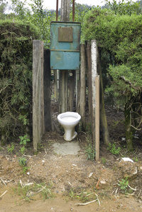Country toilet