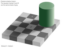 checkershadow