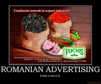 romanian-advertising-demotivational-poster-1253953233