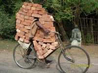 Bricks carried on a bicycle