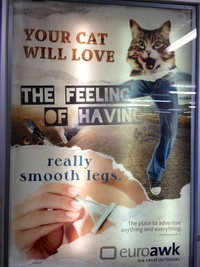 2012 - Euroawk - Your cat will love the feeling of having really smooth legs