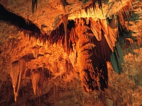 Cavern Stalactites in the Big Room