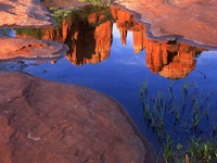 Reflection of Cathedral Rock at Red Rock Crossing